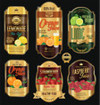 retro vintage golden labels for organic fruit vector image vector image