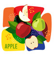 ripe apple fruits on vector image