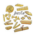 set of elements of different kinds of pasta on a w vector image