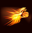 Fire Dragon with a basketball vector image