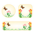 banner and buttons tulips with butterfly vector image vector image