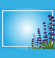 border template with lavender flowers vector image vector image