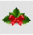 christmas holly berry transparent background vector image