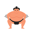 flat style of sumo wrestler vector image