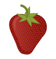 isolated strawberry vector image