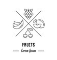 line banner fruits vector image