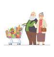 senior man and woman shopping - flat design style vector image