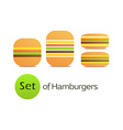 Set of Hamburgers vector image vector image