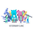 veterinary clinic services concept for web vector image vector image