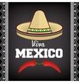 viva mexico sombrero poster icon vector image