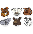 Cartoon bears heads set vector image vector image
