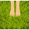 Foot over green grass vector image