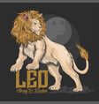 lion leo gold hair vector image