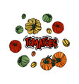 set with tomatoes vector image