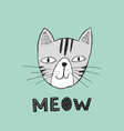 poster with hand drawn funny cat vector image
