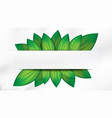abstract realistic green leaves with white banner vector image vector image