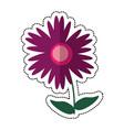 cartoon magnolia flower natural vector image vector image