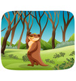 otter in nature landscape vector image vector image