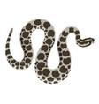 wild animal massasauga rattlesnake isolated object vector image vector image