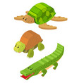 3d design for turtle and crocodile vector image vector image