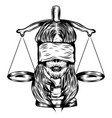blind women with justice law vector image