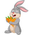 cartoon rabbit holding carrots vector image vector image