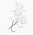 handwritten line drawing floral logo monogram x vector image vector image