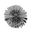 retro isolated burst vector image