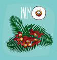 set of isolated plant palm seeds herb vector image vector image