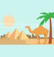 desert view egypt pyramids flat vector image vector image