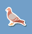 dove paper sticker on stylish background vector image vector image