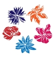 Five multi-colored flowers vector image vector image