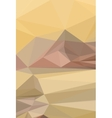 Low Poly Pattern vector image