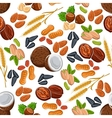 Nuts seeds legumes and cereal pattern vector image vector image
