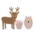 owl bird and reindeer with basket flowers vector image