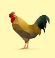 real rooster vector image vector image