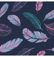 Feathers Color Pattern vector image