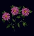 colorful chrysanthemum flowers plant set vector image vector image