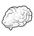isolated brain design vector image vector image