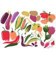vegetables set healthy nutrition food carrot vector image vector image