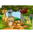 wild animals living in forest vector image