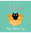 Cat inside opened cardboard package box valentines vector image vector image