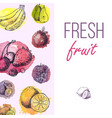 fresh fruits drawing menu template hand drawn vector image