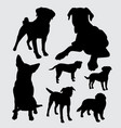 pet dog animal silhouette vector image vector image