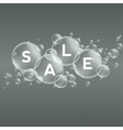 Price labels in bubbles Sale vector image