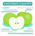 10 health benefits of green apple vector image vector image