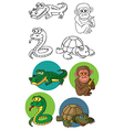 animals reptiles and monkey vector image