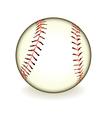 ball baseball vector image vector image