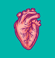 human heart icon hand drawn style vector image