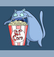 hungry popcorn cat at cinema vector image vector image
